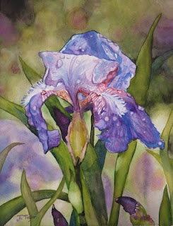Watercolors by Jen Taylor
