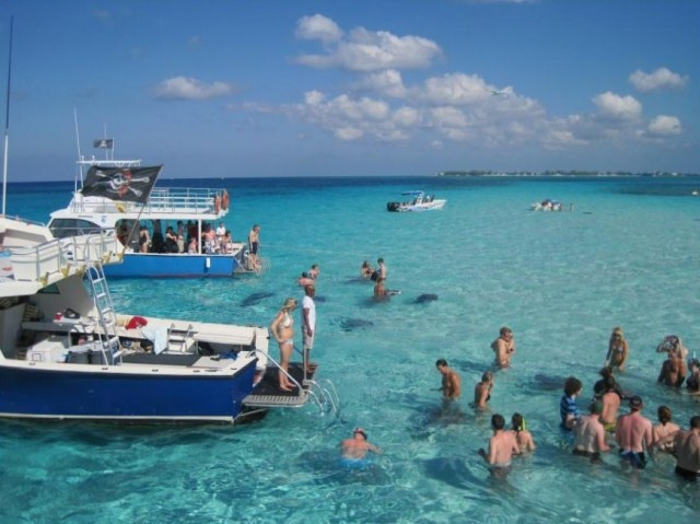 Sting Ray City in Grand Cayman....awesome way to interact with these amazing creatures!