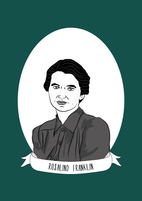 Rosalind Franklin was an English chemist and X-ray crystallographer who made contributions to the understanding of the fine molecular structures of DNA, RNA, viruses, coal, and graphite. Franklin...
