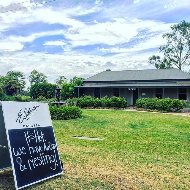 """Well that's two of our favourite things! Spotted at @eldertonwines today """"it's hot - we have aircon & Riesling"""""""