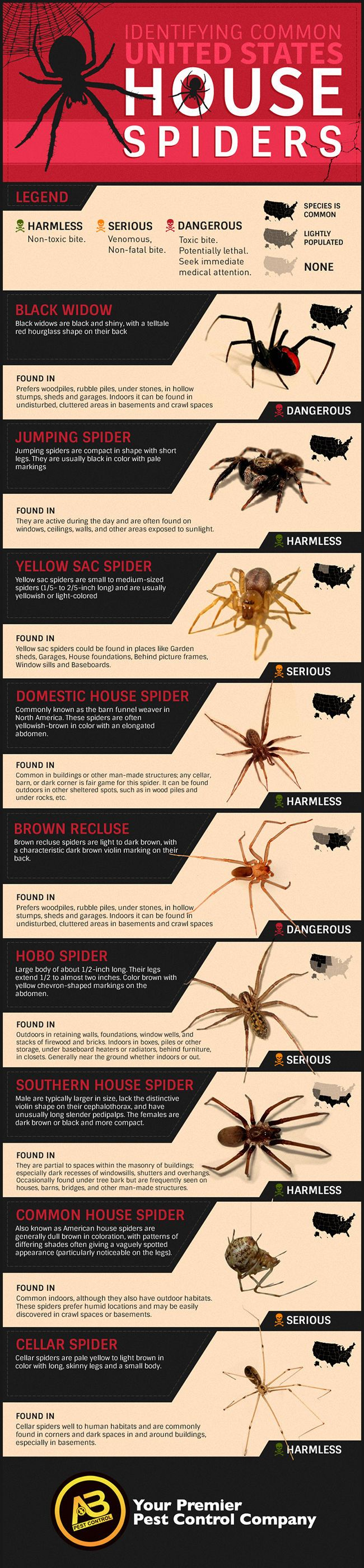 From harmless with a non-toxic bite, to serious to dangerous. Find which spiders are common in your area of the U.S. via AB-Pest Control