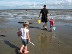 La pêche à pied, les conseils de la #SNSM                                                                                                                                                                                 Plus