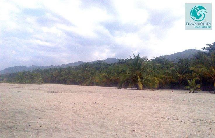 Buenos días amigos y seguidores, así amanece hoy en este paraíso ¿Cuándo nos piensas visitar?