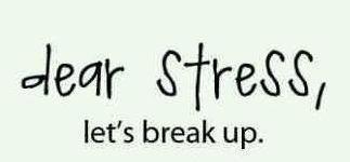 No doubt!! Lol: No Doubt, Kinda Stuff, Dear Stress, Fashion Quotes, Vision Boards, Break Up