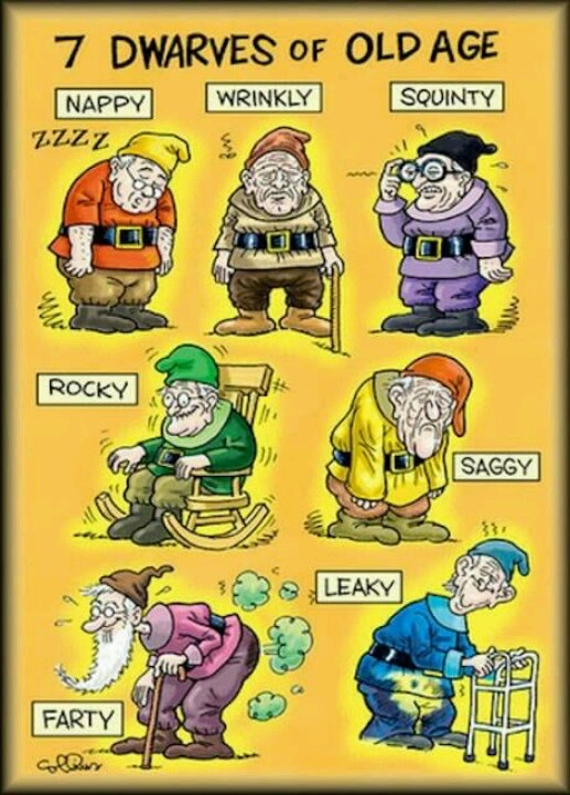 funny 7 dwarfs pictures funny