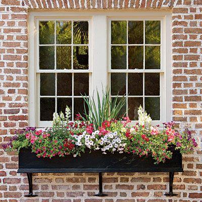 Cute outdoor window treatment.