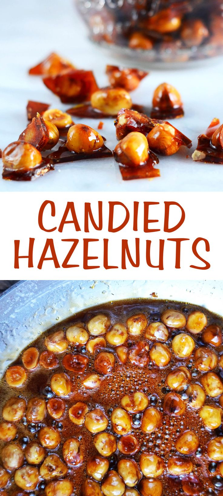 A easy and delicious recipe for candied hazelnuts. Eat these treats on their own, top your ice cream sundae with them or gift them to your friends.