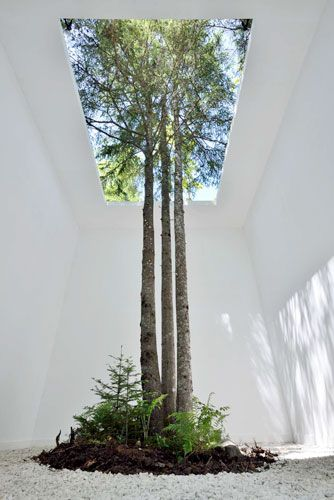 Indoor and outdoor intwined: ANOUK VOGEL LANDSCAPE ARCHITECTURE More