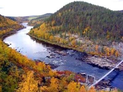 Fall foliage at Ivalo River