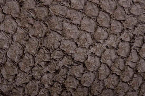 Fish leather: perch (matt finish)