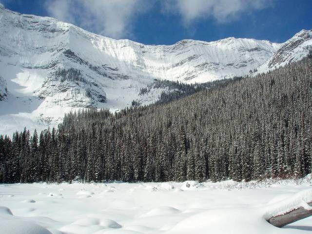 5 Great Snowshoe Trips – Kananaskis – Hiking Alberta