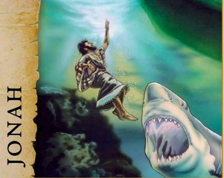 37 best images about jehovah teaches jonah on pinterest for The fish that ate the whale