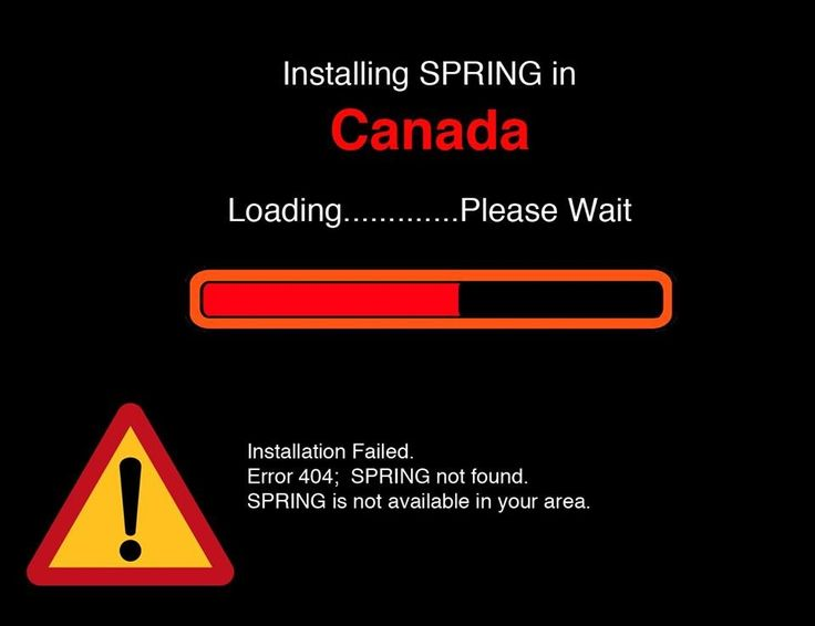 Loading spring