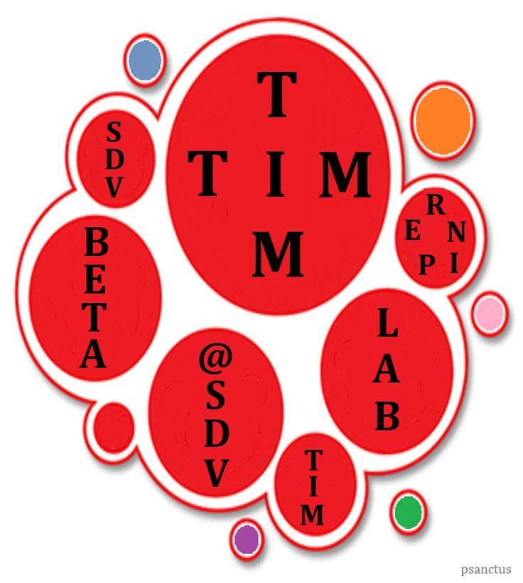 TIM Beta Lab @SDV #REpin