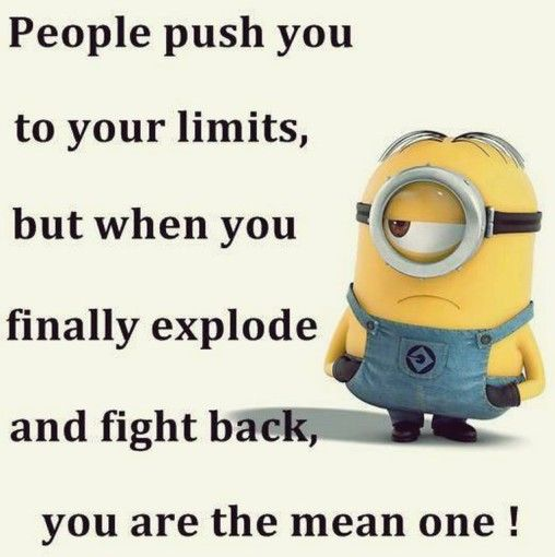 funny minion pictures 065