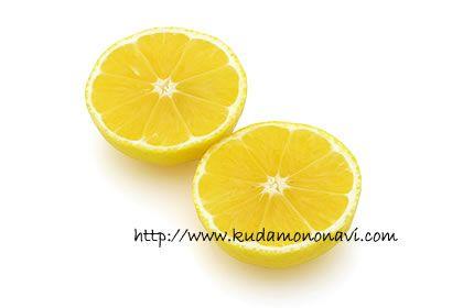 黄金柑の来歴は不明ですが、明治時代には鹿児島県日置郡で「黄蜜柑(きみかん)」として食べられていたようです。のちに「黄金柑(おうごんかん)」という名前が付けられ、今もこの名前で流通しています。神奈川県では「ゴールデンオレンジ」とも呼ばれます。