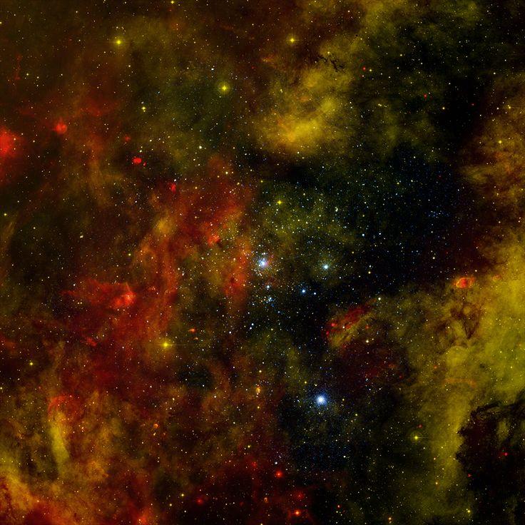 Asociación OB2. Los grupos y asociaciones contienen enormes cantidades de jóvenes estrellas calientes y masivas, conocidas como estrellas O y B. El cúmulo estelar Cygnus OB2 en la constelación Cygnus, contiene más de 60 estrellas de tipo O y cerca de mil estrellas de tipo B. Cygnus OB2 es el cúmulo masivo más cercano a nuestro sistema.