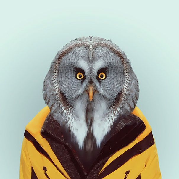 Hilarious Zoo Portraits by Yago Partal | Bored Panda
