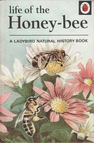 Ladybird book about Honey Bees...feb16