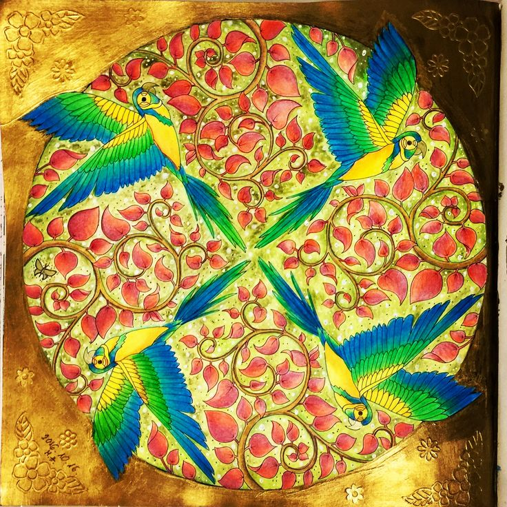 Coloring Books Colouring Johanna Basford Tropical Paradise Parrots Mj Jungles Vintage Pages