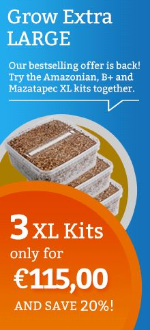 Offer XL Magic Mushroom Growkit Pack