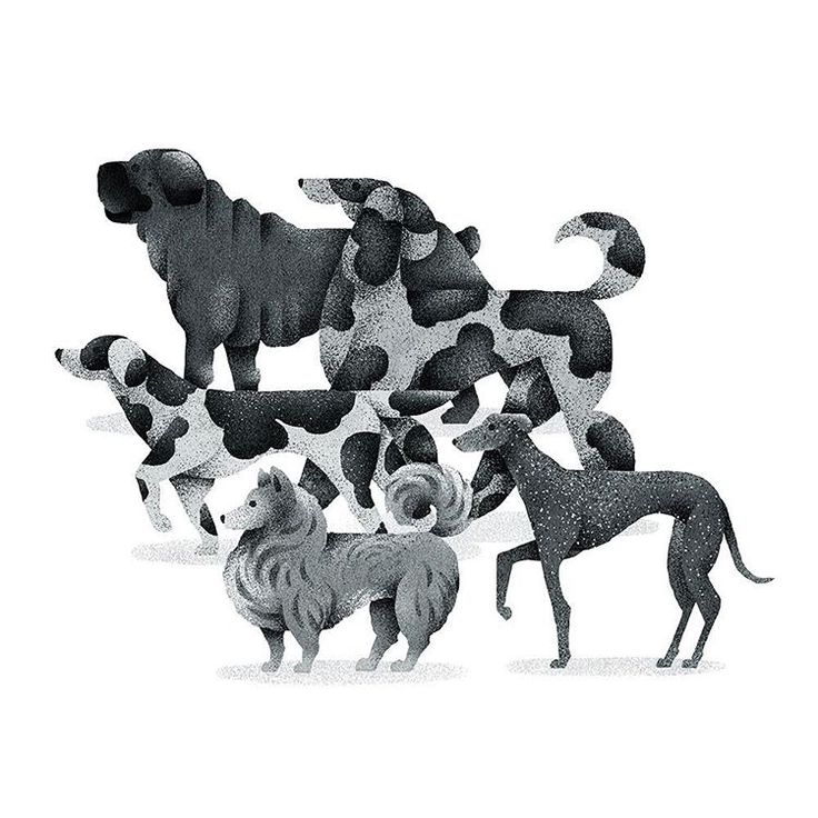 Dogs by Studio MUTI  #MUTI #vector #vectorillustration #bestvector #illustration #designstudio #illustrationoftheday #digitalillustration #flatdesign #graphicdesign #editorial #editorialillustration #design #icon #icondesign #illustrator #digitalart #designspiration #artwork #illustrationartists #illustrationage #illustrationfriday #graphicdesigncentral #thedesigntip #picame #creativity #designmilk #digitalart #graphicgang #gfxmob