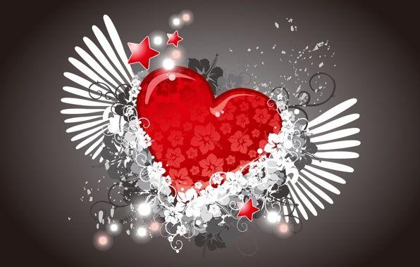 Обои картинки фото сердце, цветы, крылья, вектор