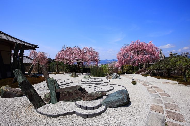 京都市左京区一乗寺小谷町にある圓光寺(えんこうじ)の桜。圓光寺は春は桜の隠れた名所。石庭「奔龍庭」の2本の立派なしだれ桜。天気の良い青空の日には、石庭とあわせて絵になる春の情景が楽しめる。華やかなピンクのしだれ桜など。2017年4月16日訪問、撮影。