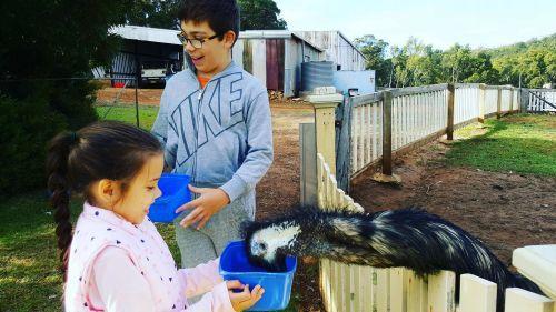 Kirup Kabins Farm Stay, Kirup - Blog Reviews | - Buggybuddys