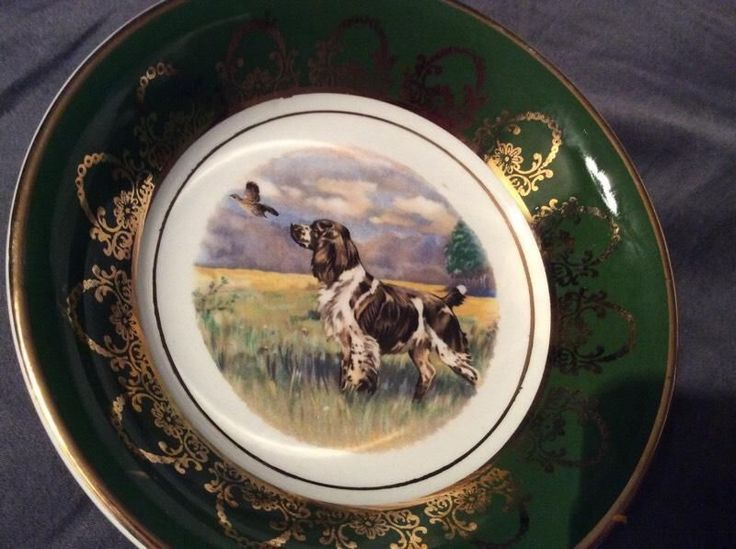 Must see @ Hey JUDES 1 Fraser abroad Assagay Hillcrest and other cute plates too! Must see!  Hey JUDES Antiques Barn on our sugar cane farm between PMB and Hillcrest just 10km off the N3 and easy to get to for all in KZN! Google heyjudesbarn or send me your email for directions! No 1 House