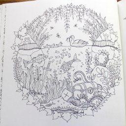 Ver 1 000 bilder om m larbilder p pinterestm larb cker for Enchanted forest coloring pages pdf