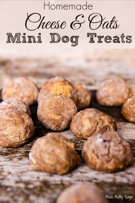Homemade Cheese & Oats Mini Dog Treats - This recipe looks easy, and would be a great way to show your pooch some extra love! :)