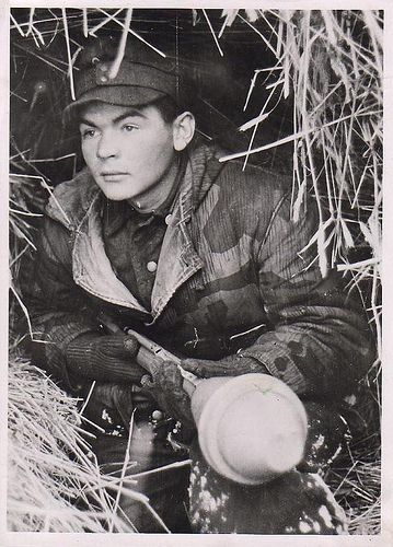 Wehrmacht soldier waiting in a hay bale with a panzerfaust ...