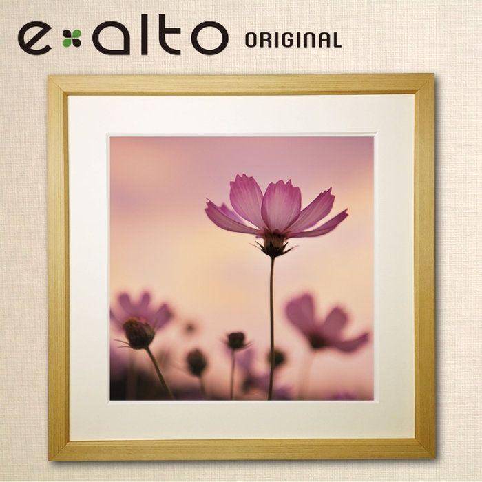 壁掛けアート額縁付アートパネル美しいコスモス秋桜の風景画