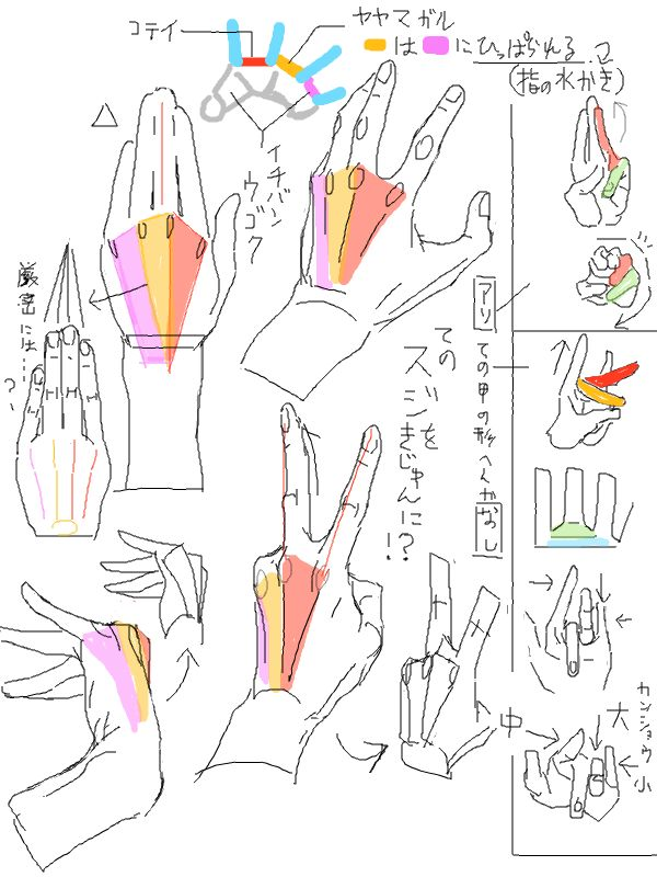 """k3、さんはTwitterを使っています: """"風呂場で手の平見てたら、描き方で気づいた事と気のせいだった事があったのでスケッチ 手の甲のスジの関係さえどうにかなれば応用できそう・・・ http://t.co/INbT1op5YA"""""""