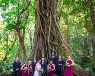 Stunning Mount Kiera Wedding Ceremony in the rainforest followed by reception by the beach!