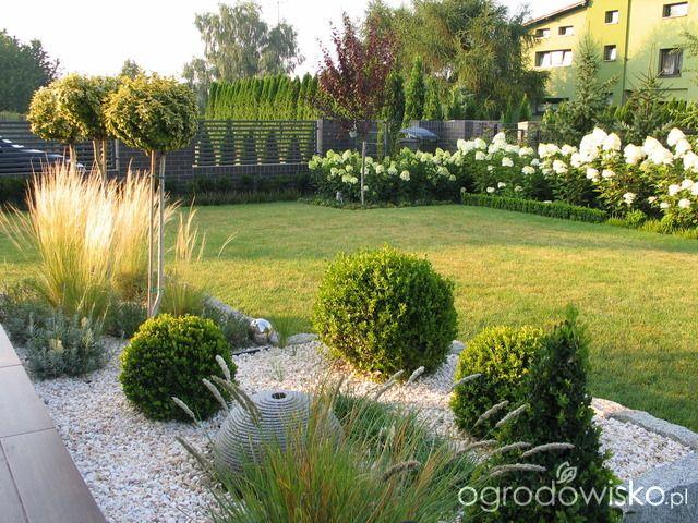 Ogród Tosi - strona 329 - Forum ogrodnicze - Ogrodowisko