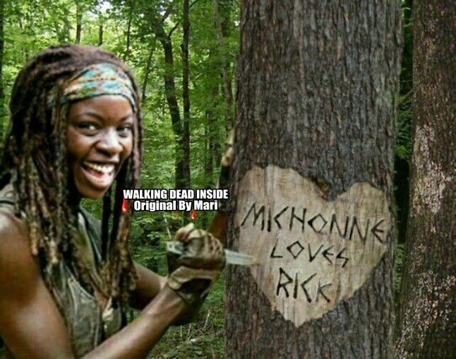 The Walking Dead, Memes, Rick Grimes, Andrew Lincoln, Michonne, Danai Gurira