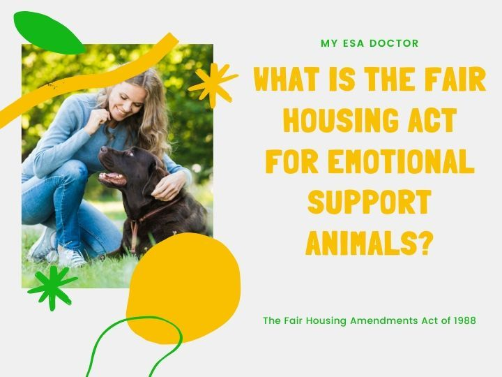 What Is The Fair Housing Act For Emotional Support Animals Emotional Support Animal Emotional Support Emotional Support Dog