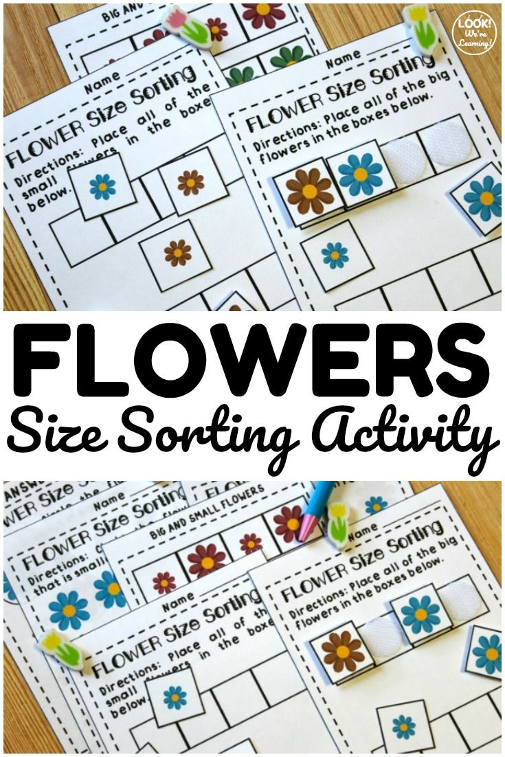Big And Small Flower Size Sorting Printables For Kids Size Sorting Shape Sorting Activities Shapes Preschool [ 1102 x 735 Pixel ]