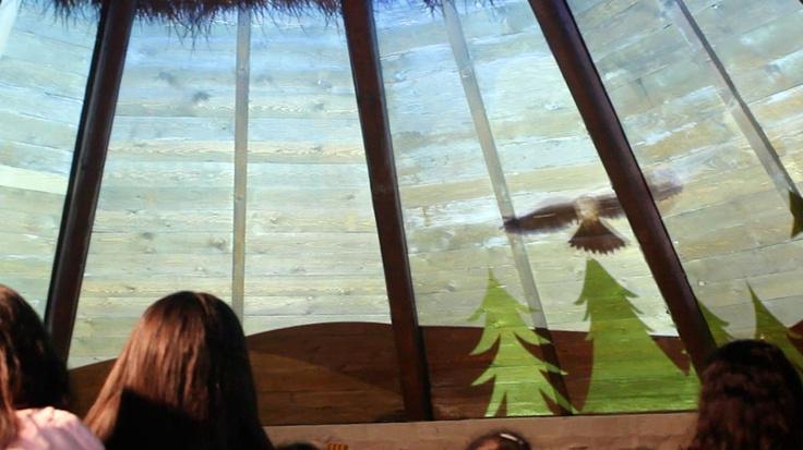 Laboratorio didattico interattivo alla scoperta del Monte Arci, del ciclo di vita del bosco, delle piante e degli animali che lo popolano. Villa Verde, Oristano