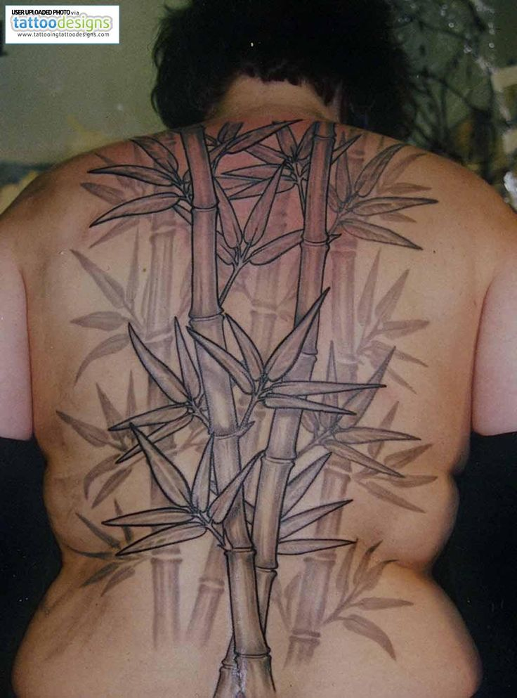 17 best japanese bamboo flower tattoo images on pinterest floral rh pinterest co uk bamboo tree tattoo designs bamboo tree tattoo designs