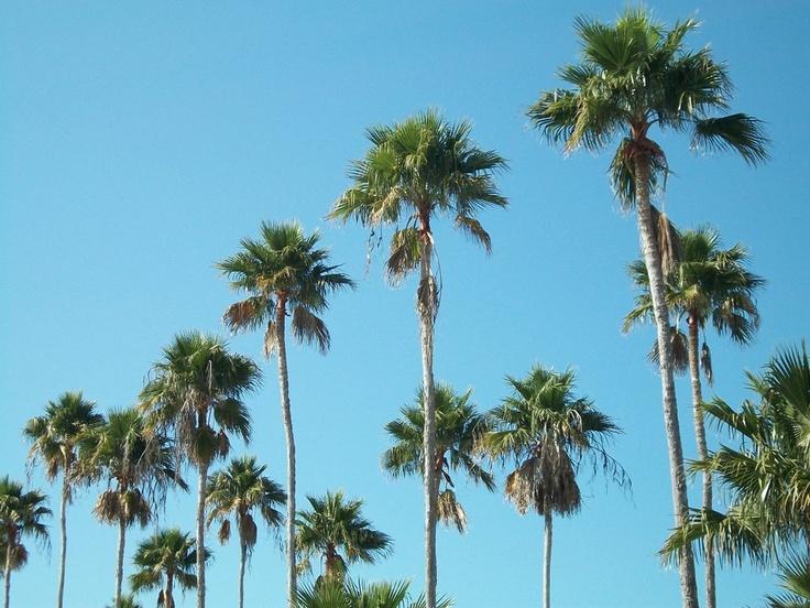 florida - just got back.