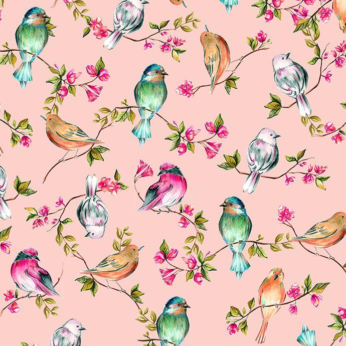 Watercolor Birds by Bianca Pozzi on Creative Market
