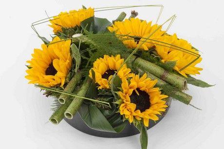 Bloemen- en plantennieuws