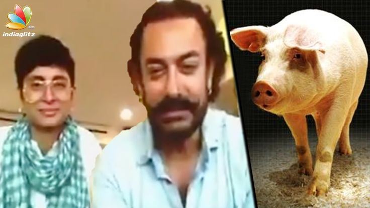Aamir Khan, Wife Kiran Rao Down With Swine Flu | Hot Cinema NewsBollywood star Aamir Khan and his wife Kiran Rao are suffering from Swine Flu which is also known as H1N1 Virus. Due to the disease they will remain i... Check more at http://tamil.swengen.com/aamir-khan-wife-kiran-rao-down-with-swine-flu-hot-cinema-news/