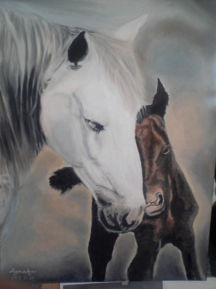 40 x60 yağlı boya tablo