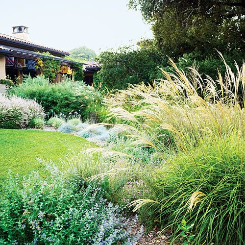 17 best images about low water garden landscaping ideas on for Low water landscaping plants