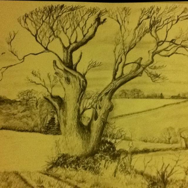 Finished sketch