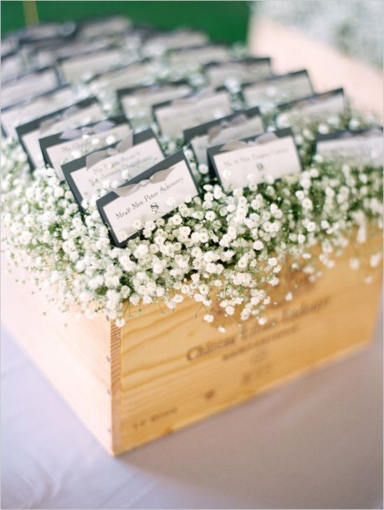 escort cards nestled in a box of babys breath